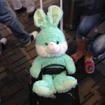 "TSA and teens: ""Put the bunny on the belt!"""